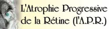 Image : L'Atrophie Progressive de la Rétine (l'A.P.R.)