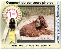 Photo du dernier gagnant